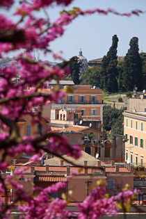 Rome-eternal-city-15