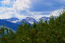 Montana Scenes by Ellen Bollinger