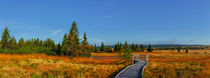 Weg ins rote Moor von moqui