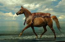 Horse Express - unusual transport of a leopard von paganin