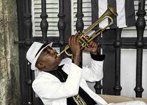 Mr Trumpet  by Rob Hawkins