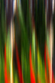 'spitzen' by k-h.foerster _______                            port fO= lio