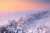 Sunrise over a frozen lake in The Netherlands von Sara Winter
