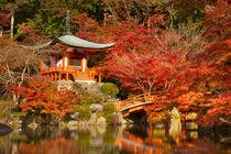Autumn colours at Daigo-ji Temple in Kyoto, Japan von Sara Winter