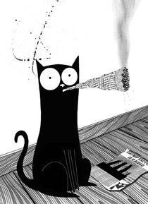 Catnip von Andrew  Hitchen