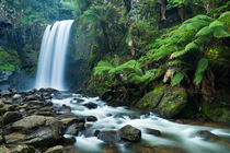 Rainforest waterfalls, Hopetoun Falls, Great Otway NP, Victoria, Australia von Sara Winter