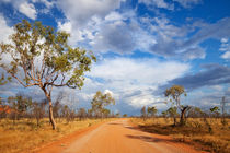 Unsealed road in the outback of Western Australia by Sara Winter