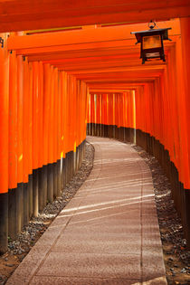Torii gates of the Fushimi Inari Shrine in Kyoto, Japan by Sara Winter