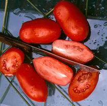 1196-tomatenmesser