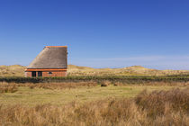 Traditional sheep barn on the island of Texel, The Netherlands by Sara Winter
