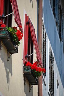 Altstadt Brixen... 6 von loewenherz-artwork