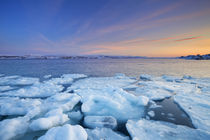 Ice floes at sunset, Arctic Ocean, Porsangerfjord, Norway von Sara Winter
