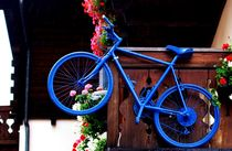 Colourful Bikes by Philipp Tillmann