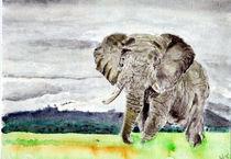 Elefant-001