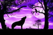 Wolf heult Mond an von darlya