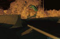 Skatepark28d
