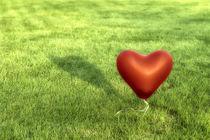 Symbols -  Heart von Mario Fichtner