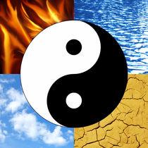 Yin Yang + 4 Elemente von darlya