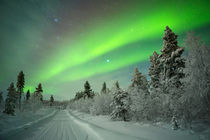Aurora borealis over a track through winter landscape, Finnish Lapland by Sara Winter