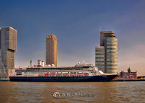 MS Rotterdam in Rotterdam by Oliver Heisler