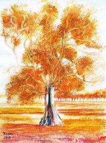 Eukalyptusbaum by Irina Usova