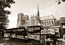 Notre-Dame Cathedral behind the bouquinistes stalls  by Perry  van Munster