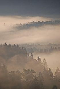 Muenchen-nach-brixen-2015-233