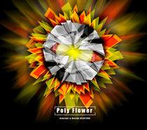 Poly Flower  by biju