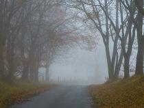 Herbstnebel am Nenndorfer Weg von brava64