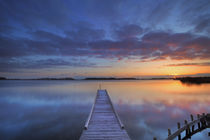 Jetty on a lake at sunrise, near Amsterdam The Netherlands by Sara Winter