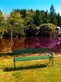 Ausblick am Teich von Patrick Jobst