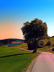 'Ein Baum, eine Landstraße und der Sommer' by Patrick Jobst