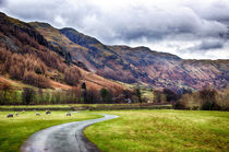Langdale Valley von Vicki Field