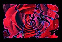 Rosen Labyrinth by foryou