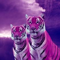 Purple Tigers von Erika Kaisersot