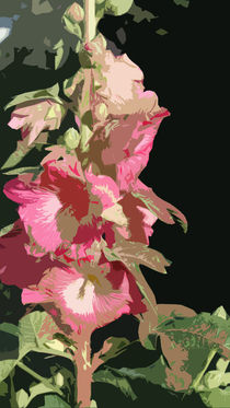 Rosa Stockrosen von gnk-art