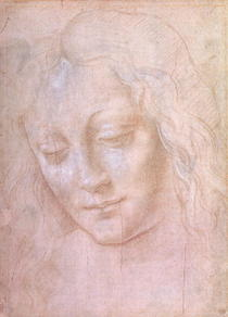 Kopf einer Frau  by Leonardo Da Vinci