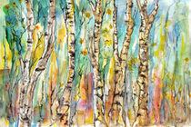 Birkenwald by Matthias Rehme
