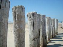 Wellenbrecher am Strand von Cadzand-Bad von freshmademedia