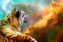 Tiger and Nebula von Erika Kaisersot