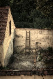 Old-farm-1538
