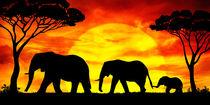 Elefanten im Sonnenuntergang by darlya
