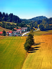 Ulrichsbergscenery2