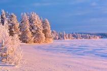 Frozen Äijäjärvi lake in Finnish Lapland in winter at sunset by Sara Winter