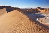 Sand dune in Valle de la Luna, Atacama Desert, Chile by Sara Winter
