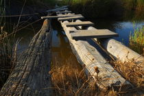 Improvised Wooden Bridge by Angelo DeVal