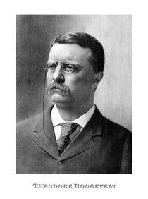 President Theodore Roosevelt von warishellstore