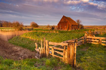 Old barn on the island of Texel, The Netherlands by Sara Winter