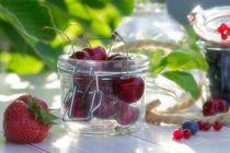 Frische Früchte Küchen Stillleben von Tanja Riedel