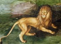 Lion  von Albrecht Dürer